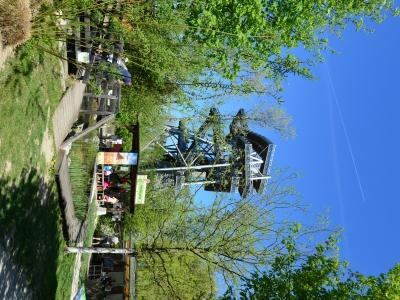 Die Garten Tulln - Galerie - Bild 994