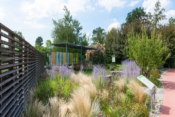 Garten im Klimawandel