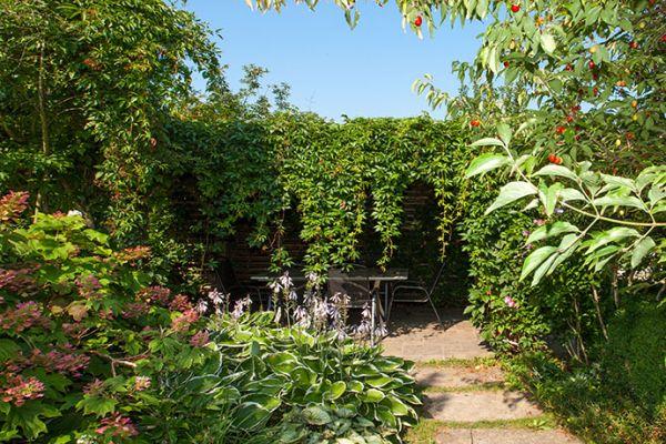 Reihenhausgarten